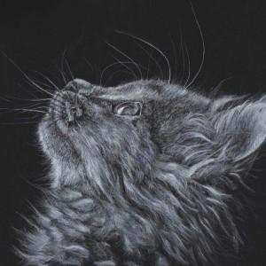 """""""Katzenhaare kann man wegfegen. Pfotenabdrücke auf dem Boden kann man wegwischen. """"Nasenkunst"""" am Fenster kann man wegputzen. Aber die Spuren, die sie in unseren Herzen hinterlassen, sind für die Ewigkeit."""" ❤ (Claudia Barthel)"""